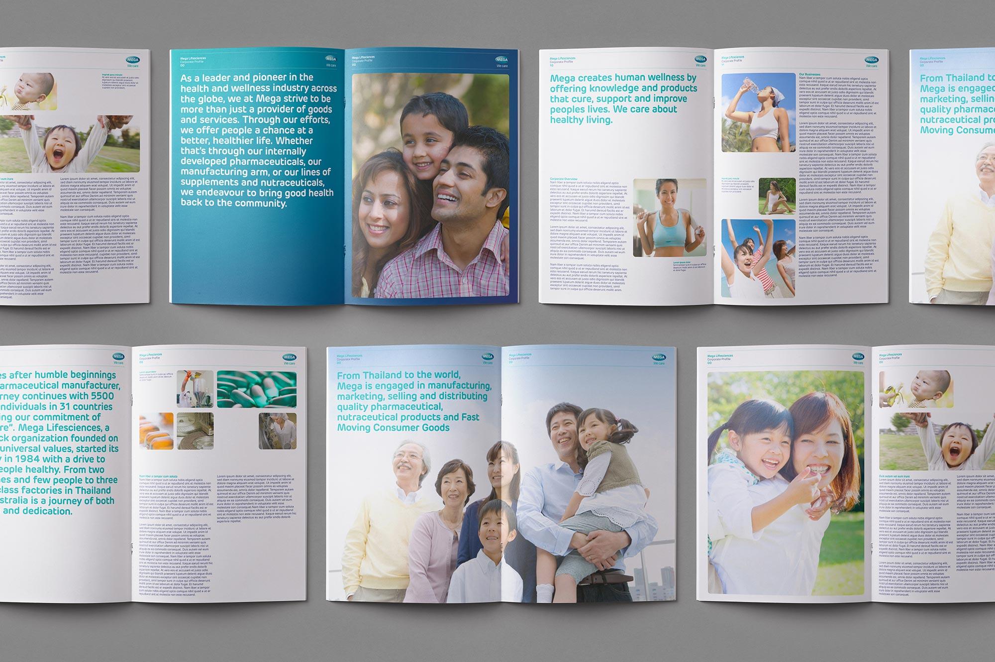 Mega Lifesciences Brochure Design