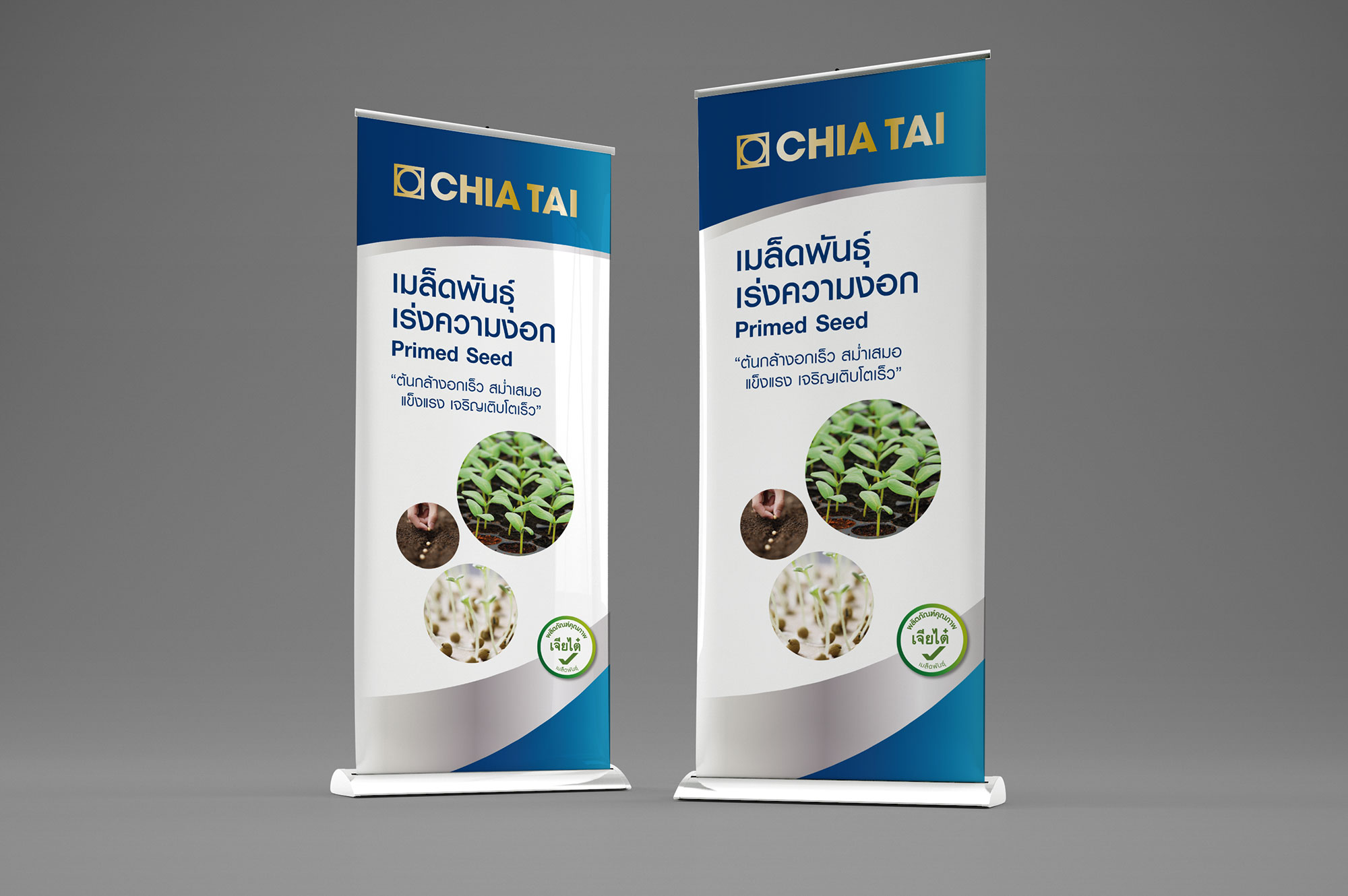 Chia Tai Pull-up Banner Design